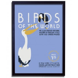 Affiche Rétro Birds of The World - WPA
